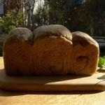 mayanuts bread