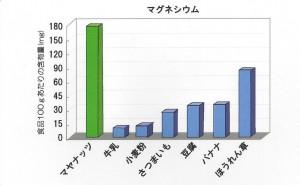%e3%83%9e%e3%82%b0%e3%83%8d%e3%82%b7%e3%82%a6%e3%83%a0