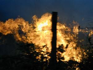 グアテマラの森が燃やされている