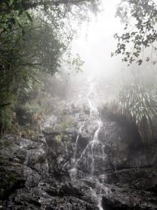 グアテマラの森と瀧